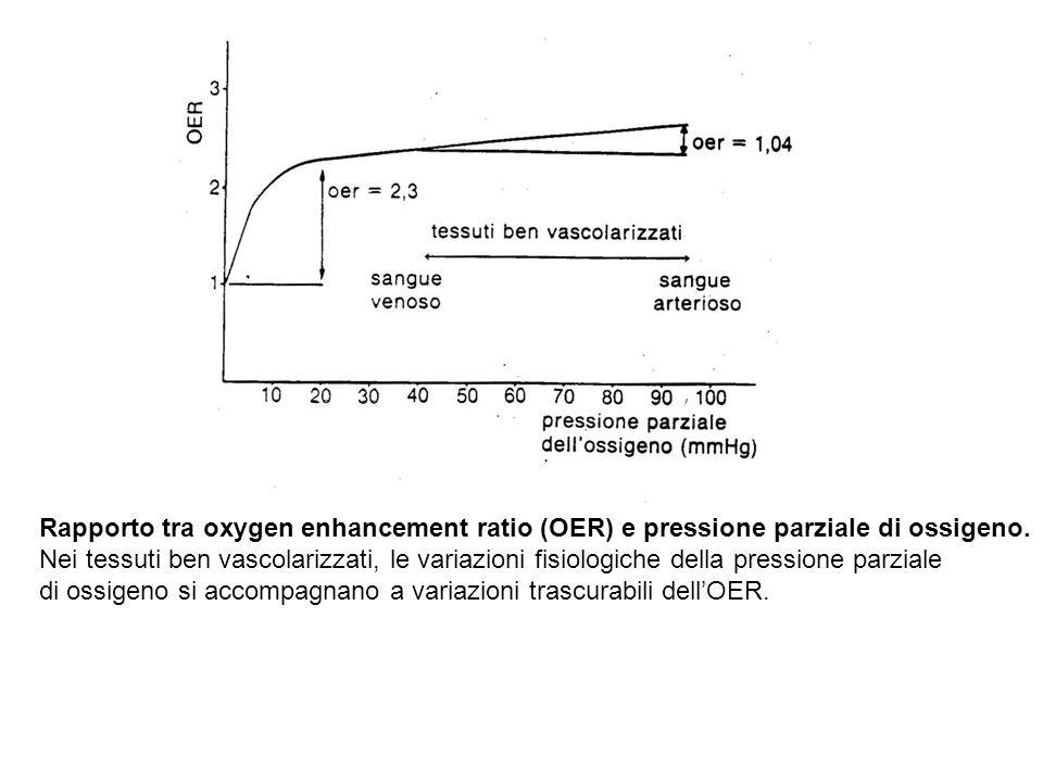 Rapporto tra oxygen enhancement ratio (OER) e pressione parziale di ossigeno.