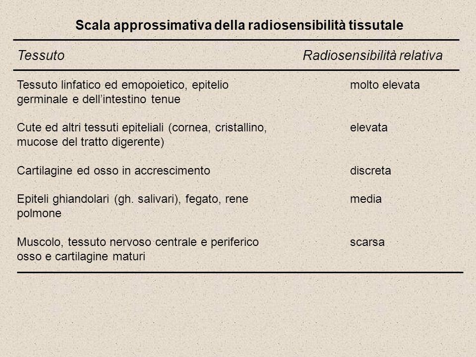 Scala approssimativa della radiosensibilità tissutale