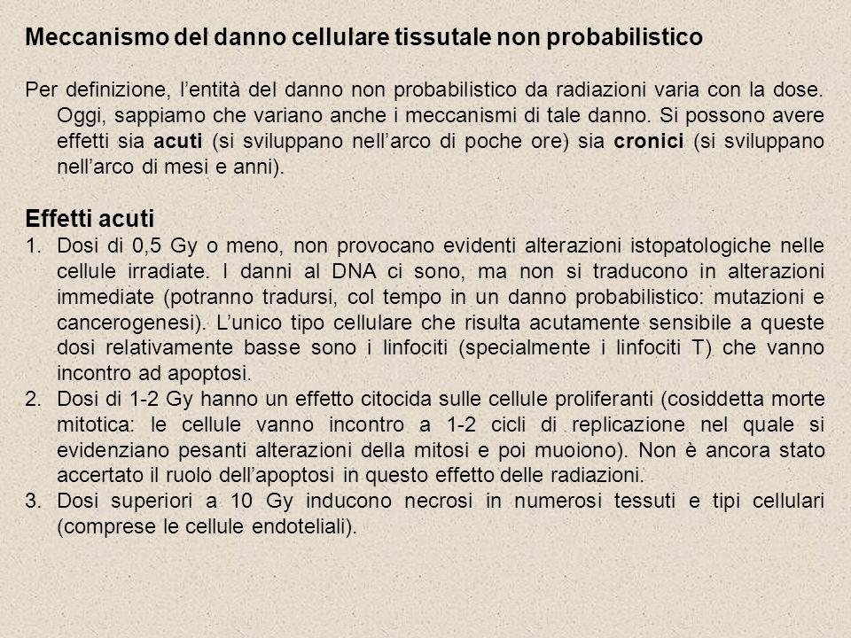 Meccanismo del danno cellulare tissutale non probabilistico