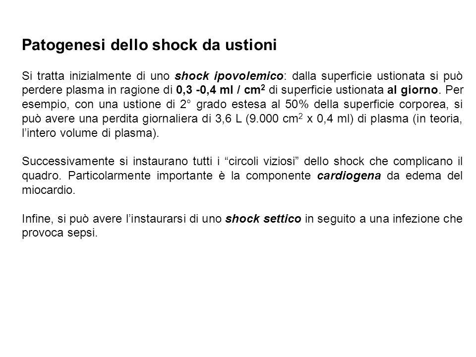 Patogenesi dello shock da ustioni