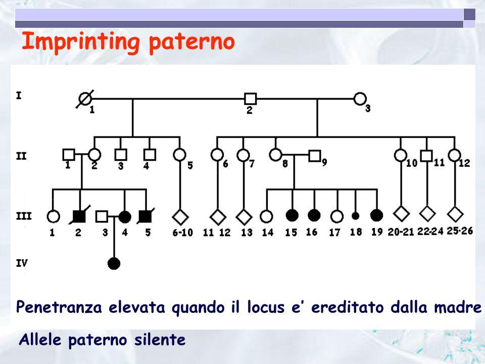 Imprinting paterno Penetranza elevata quando il locus e' ereditato dalla madre.