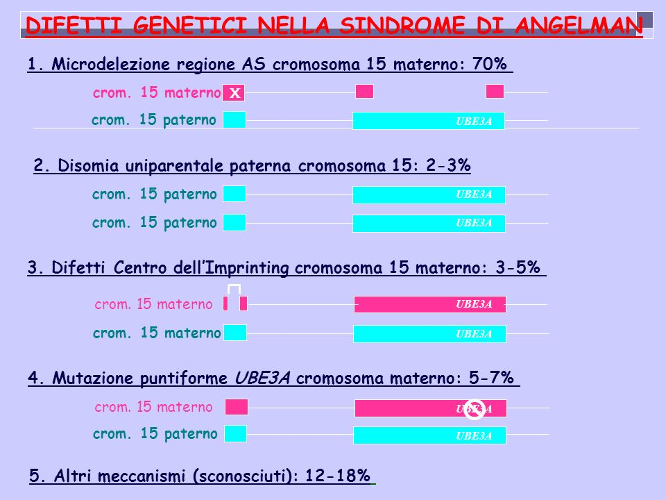 DIFETTI GENETICI NELLA SINDROME DI ANGELMAN