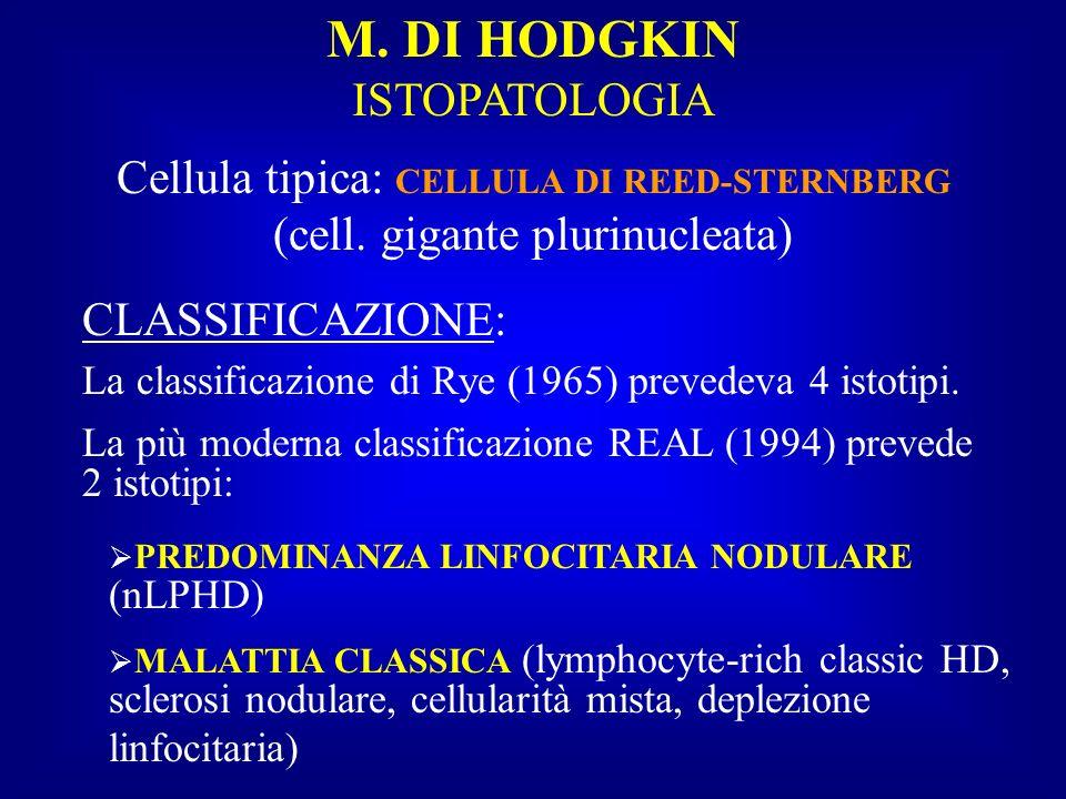 M. DI HODGKIN ISTOPATOLOGIA