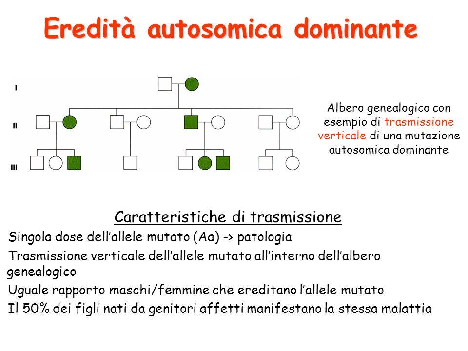 Caratteristiche di trasmissione