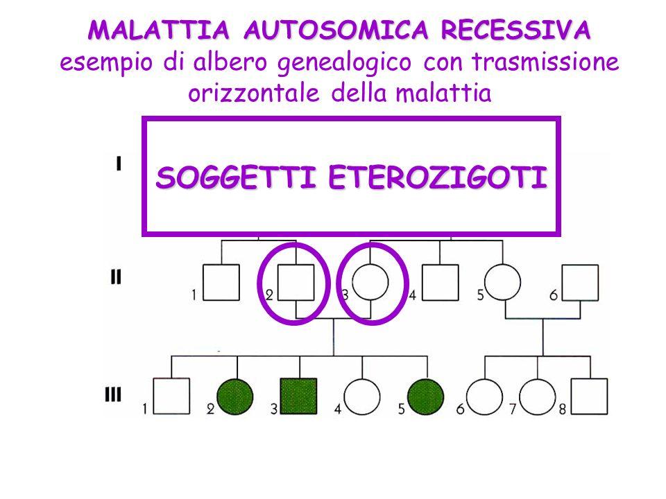 MALATTIA AUTOSOMICA RECESSIVA esempio di albero genealogico con trasmissione orizzontale della malattia