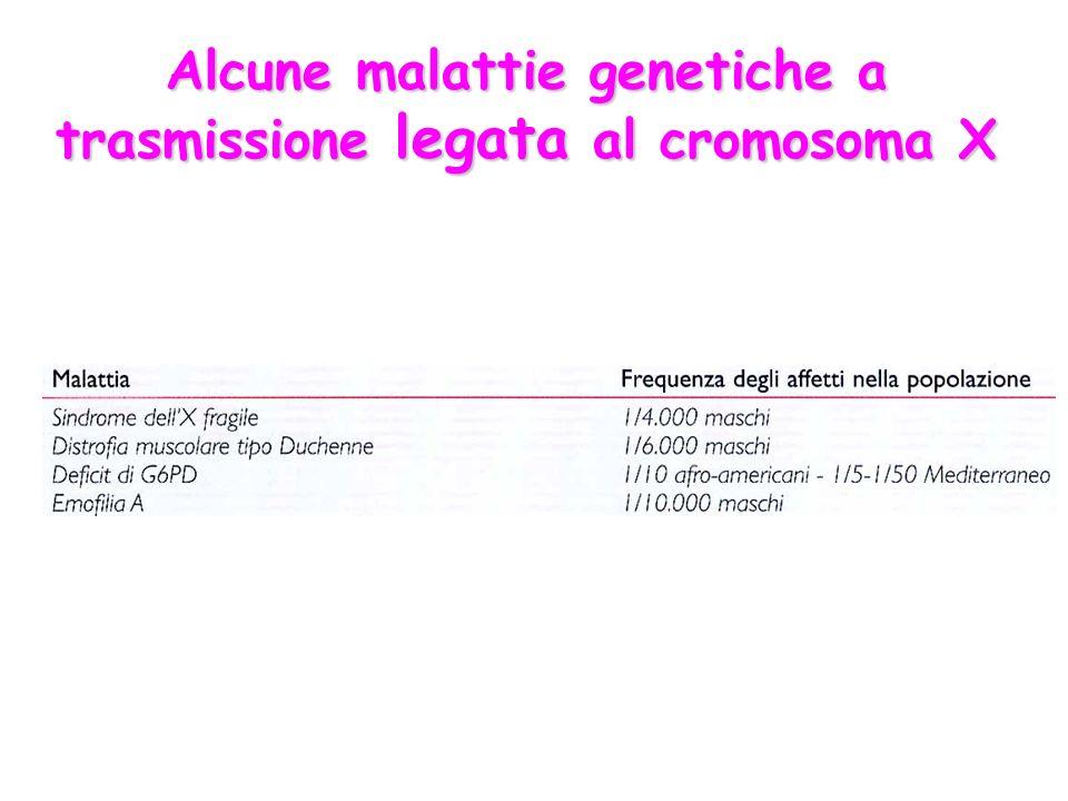 Alcune malattie genetiche a trasmissione legata al cromosoma X