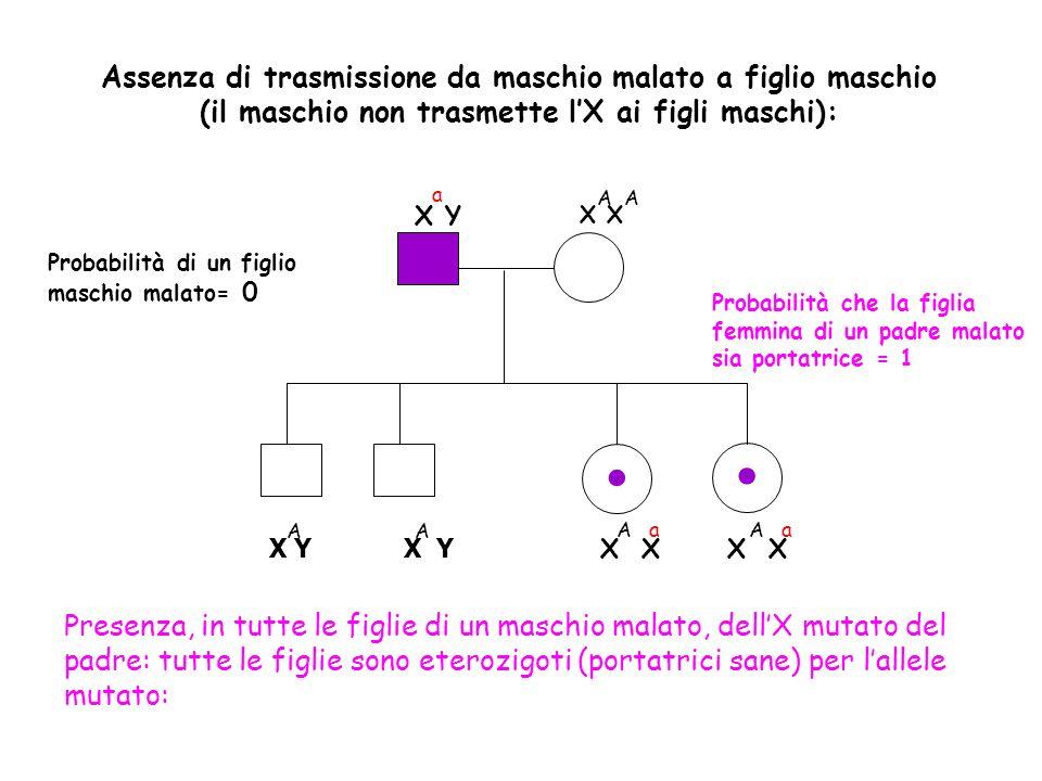 . Assenza di trasmissione da maschio malato a figlio maschio