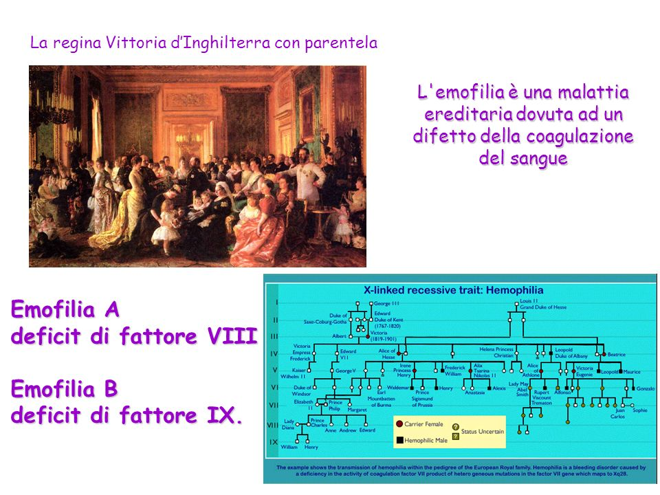 deficit di fattore VIII Emofilia B deficit di fattore IX.