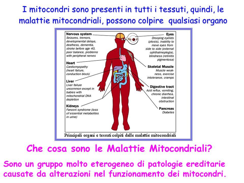 Che cosa sono le Malattie Mitocondriali