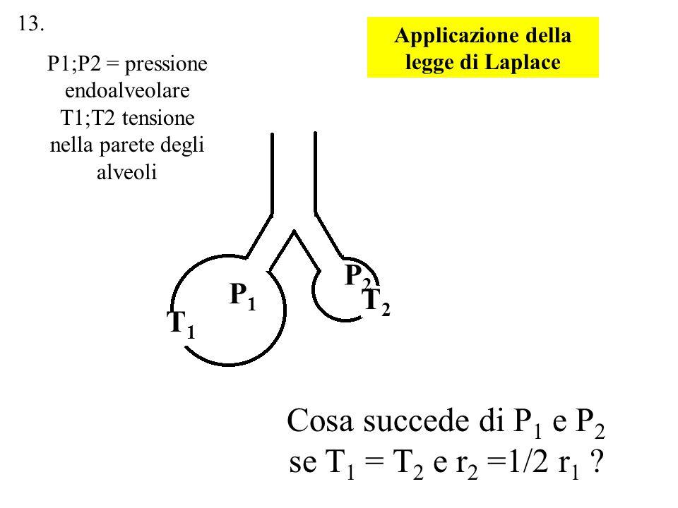 Applicazione della legge di Laplace