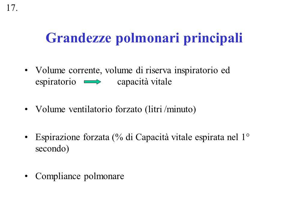 Grandezze polmonari principali