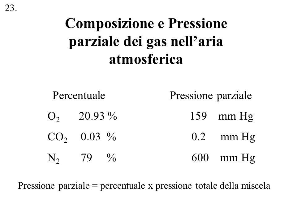 Composizione e Pressione parziale dei gas nell'aria atmosferica