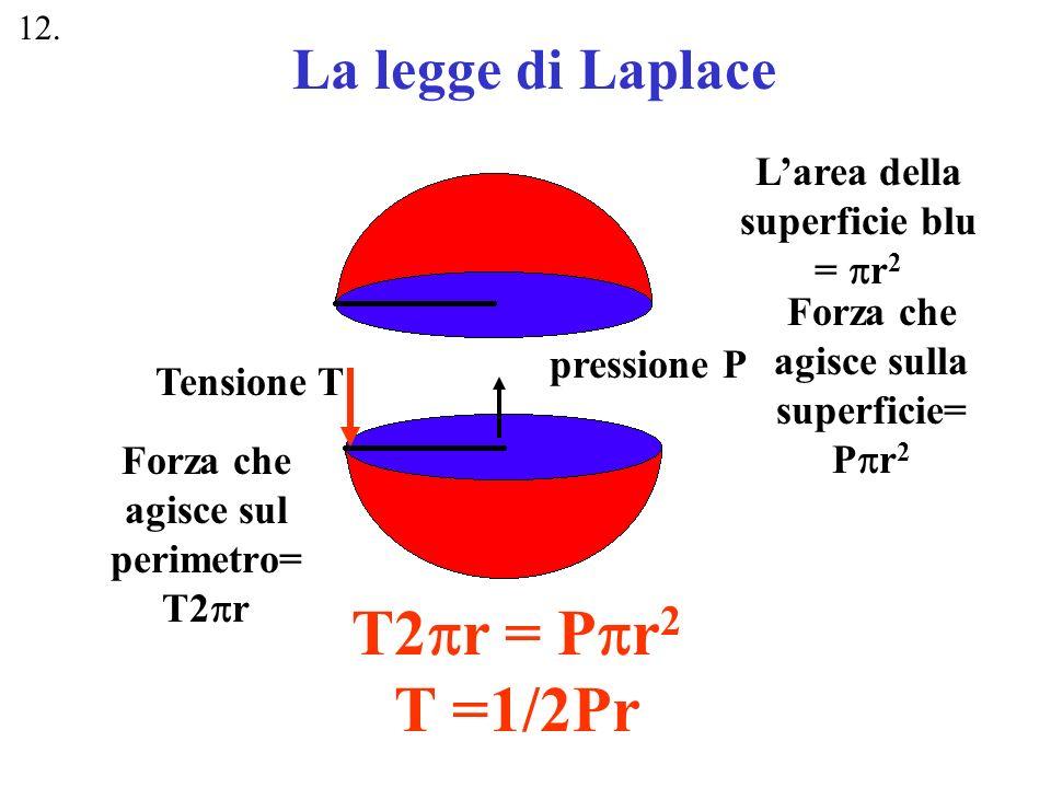 T2pr = Ppr2 T =1/2Pr La legge di Laplace