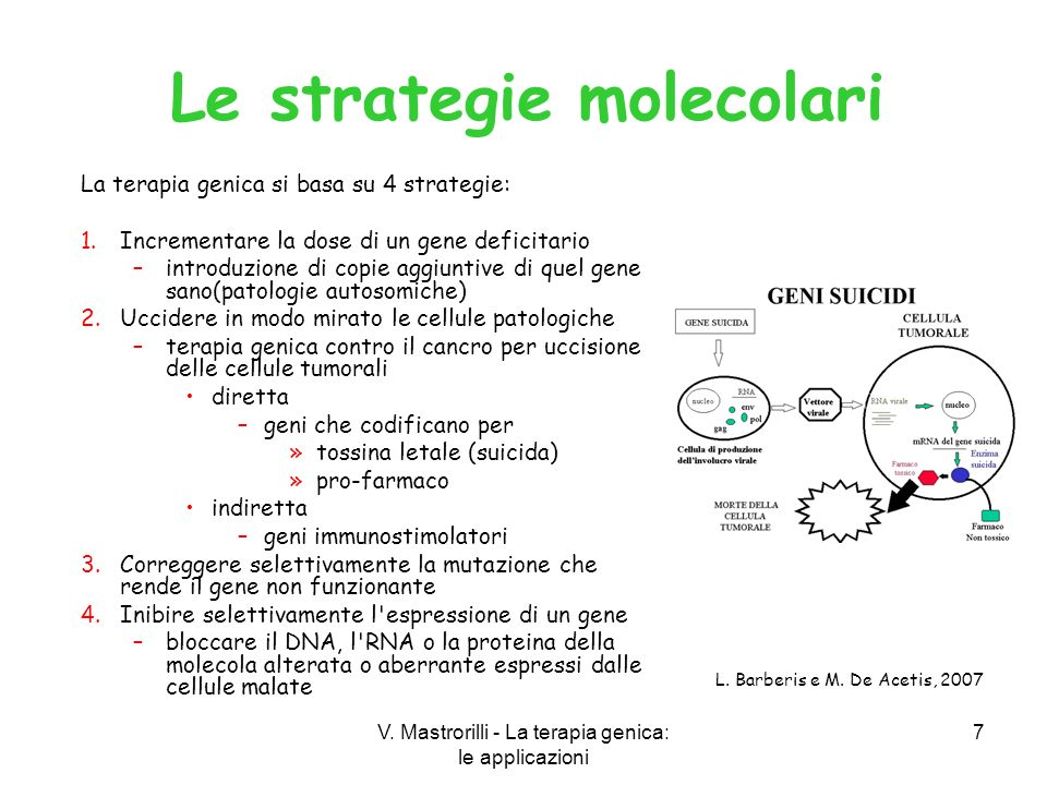 Le strategie molecolari