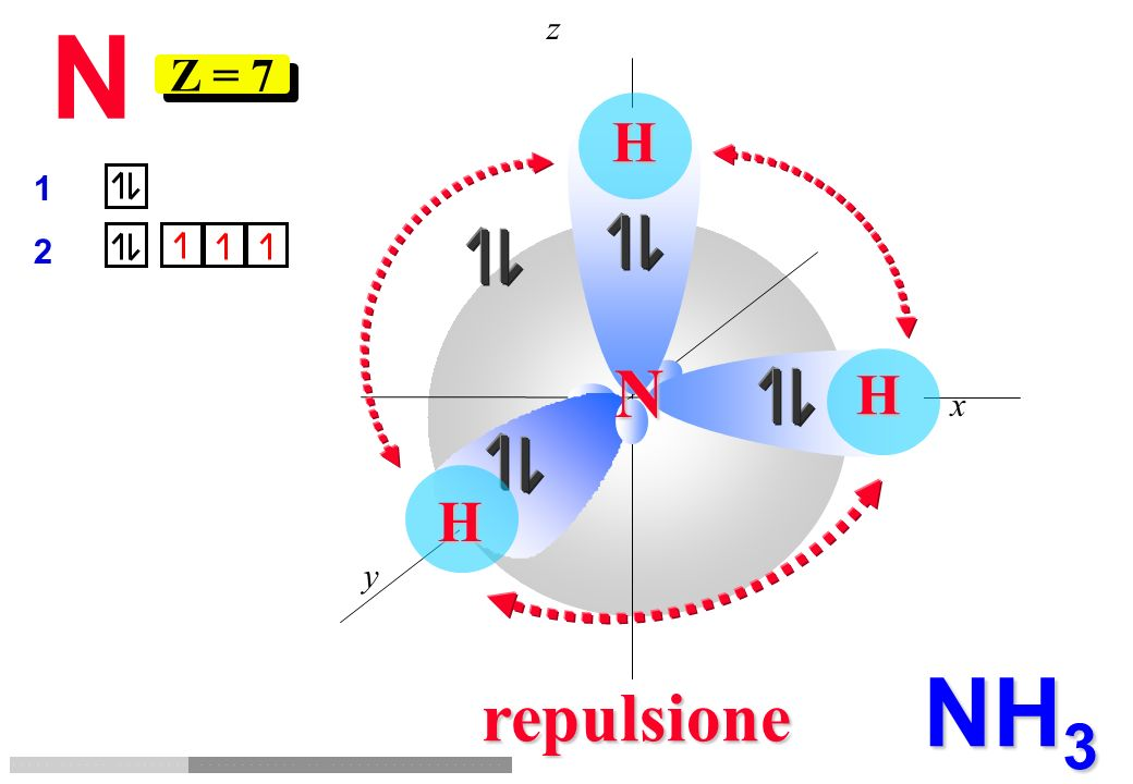 N z Z = 7 H 1 2 N H x H y NH3 repulsione