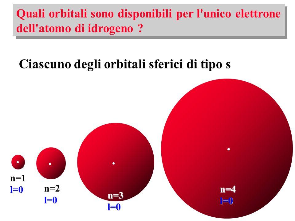 Ciascuno degli orbitali sferici di tipo s