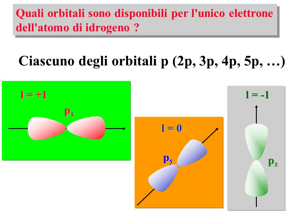 Ciascuno degli orbitali p (2p, 3p, 4p, 5p, …)