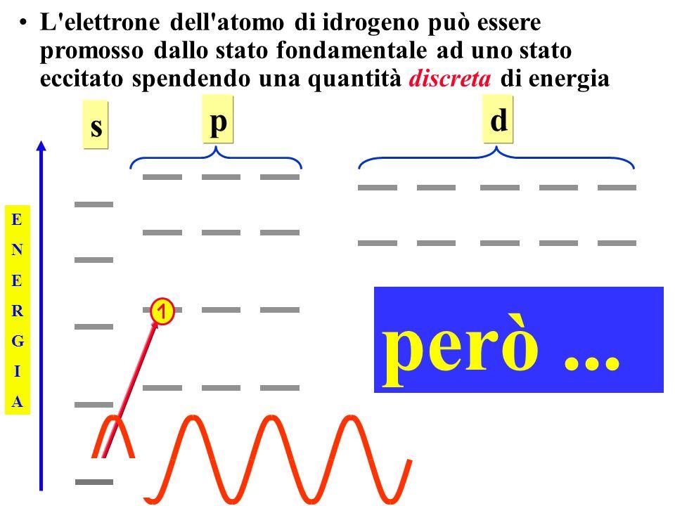 L elettrone dell atomo di idrogeno può essere promosso dallo stato fondamentale ad uno stato eccitato spendendo una quantità discreta di energia