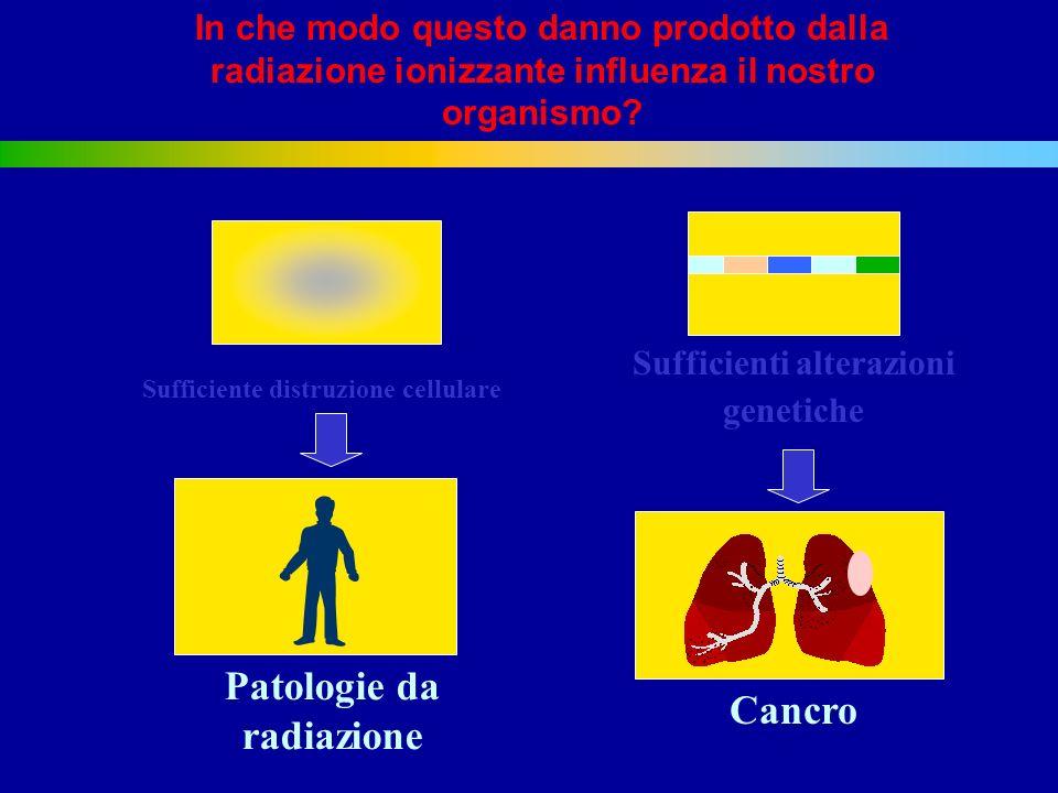 Patologie da radiazione Cancro