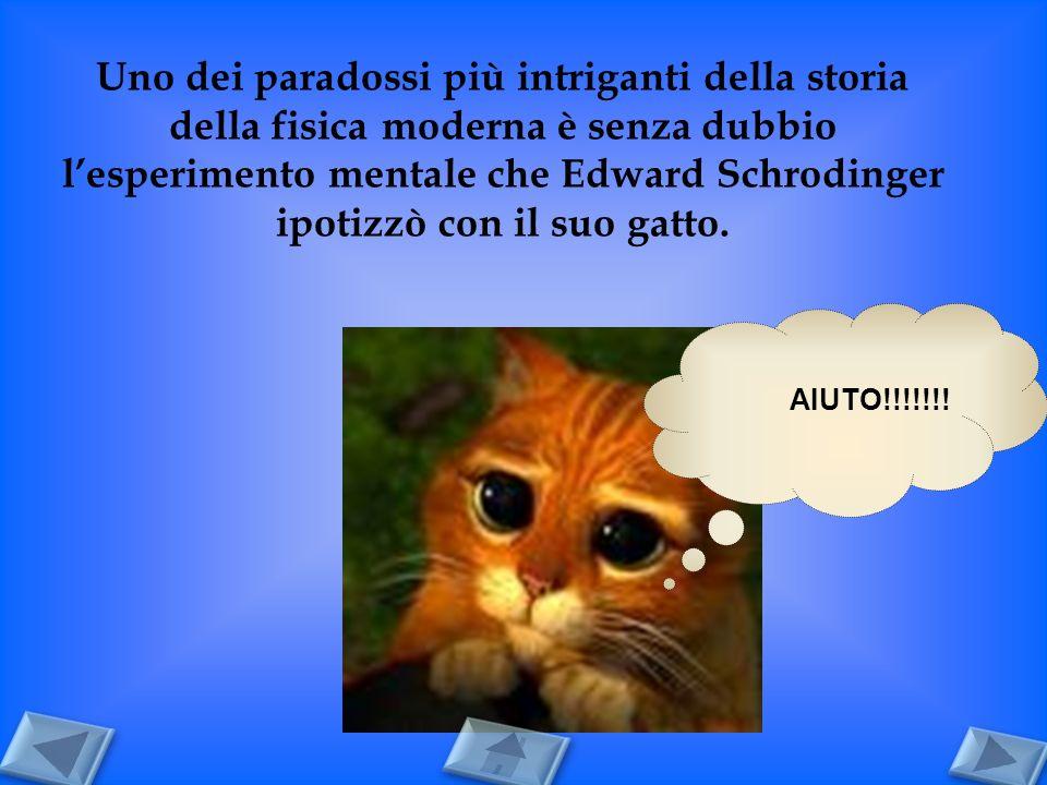 Uno dei paradossi più intriganti della storia della fisica moderna è senza dubbio l'esperimento mentale che Edward Schrodinger ipotizzò con il suo gatto.