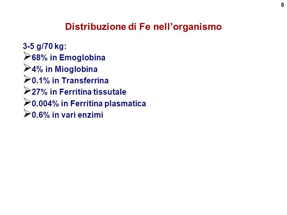 Distribuzione di Fe nell'organismo
