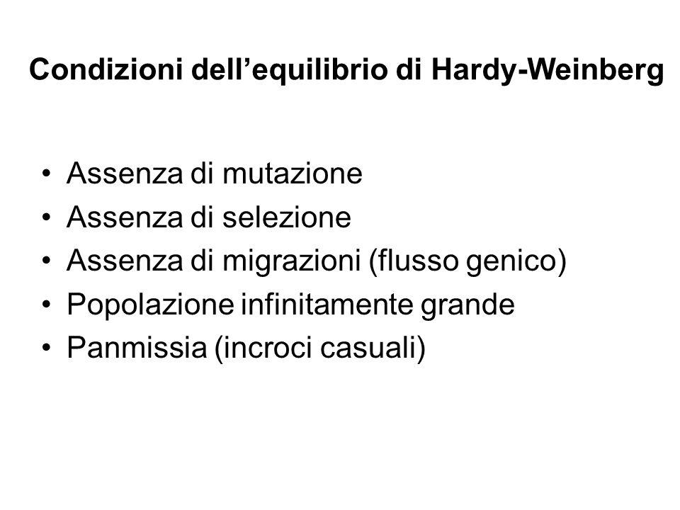 Condizioni dell'equilibrio di Hardy-Weinberg