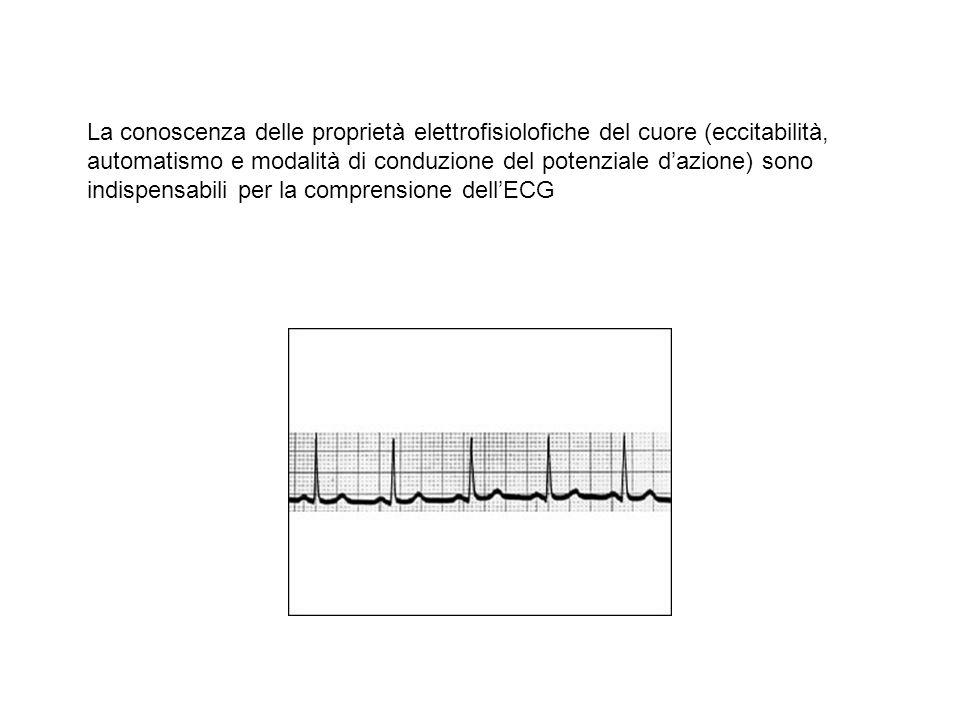 La conoscenza delle proprietà elettrofisiolofiche del cuore (eccitabilità, automatismo e modalità di conduzione del potenziale d'azione) sono indispensabili per la comprensione dell'ECG