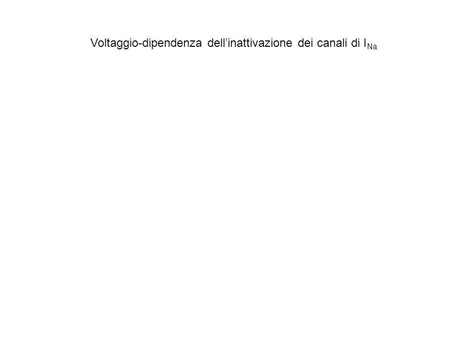 Voltaggio-dipendenza dell'inattivazione dei canali di INa