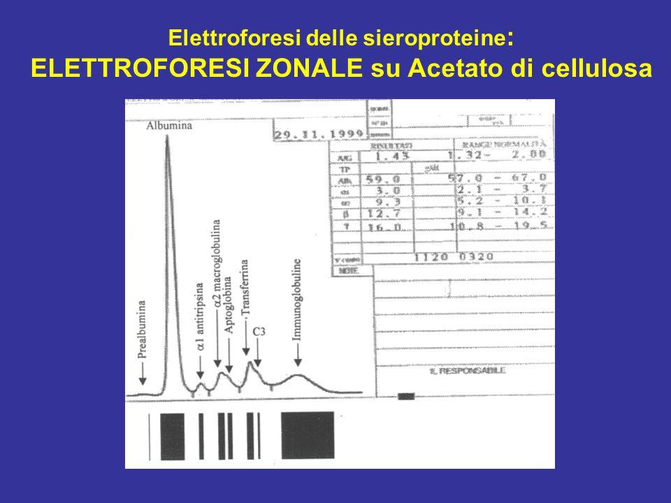 ELETTROFORESI ZONALE su Acetato di cellulosa
