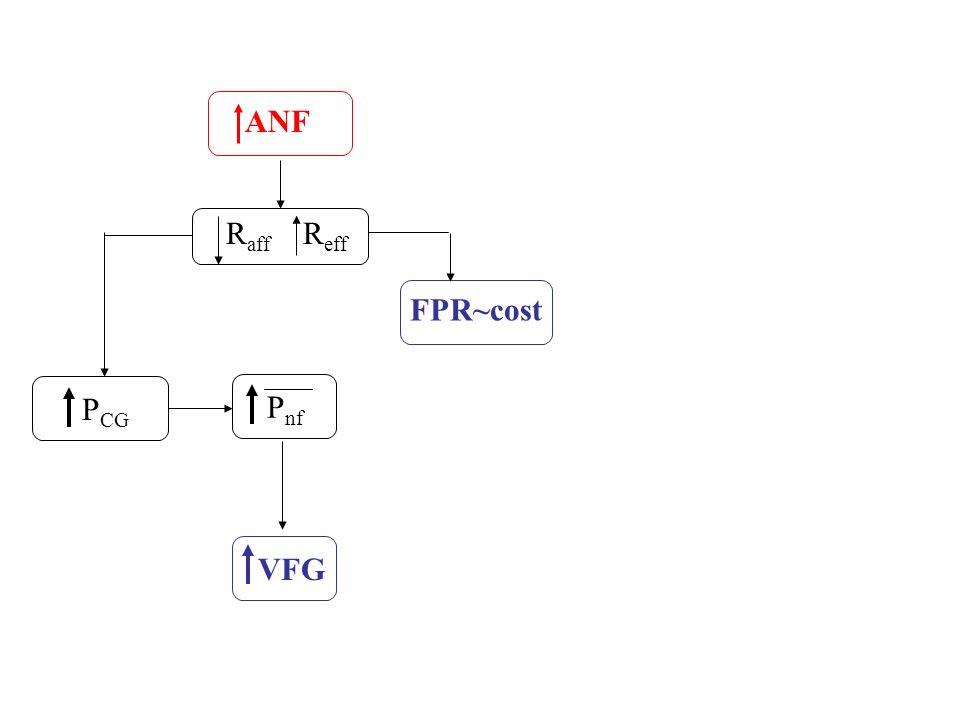 ANF Raff Reff FPR~cost PCG Pnf VFG