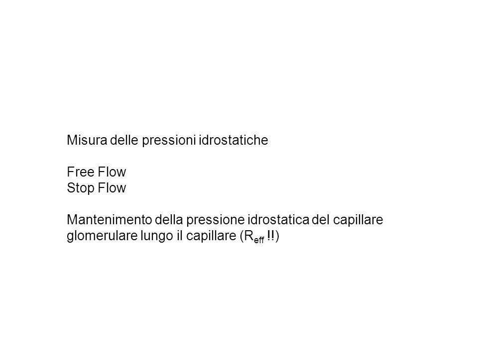Misura delle pressioni idrostatiche