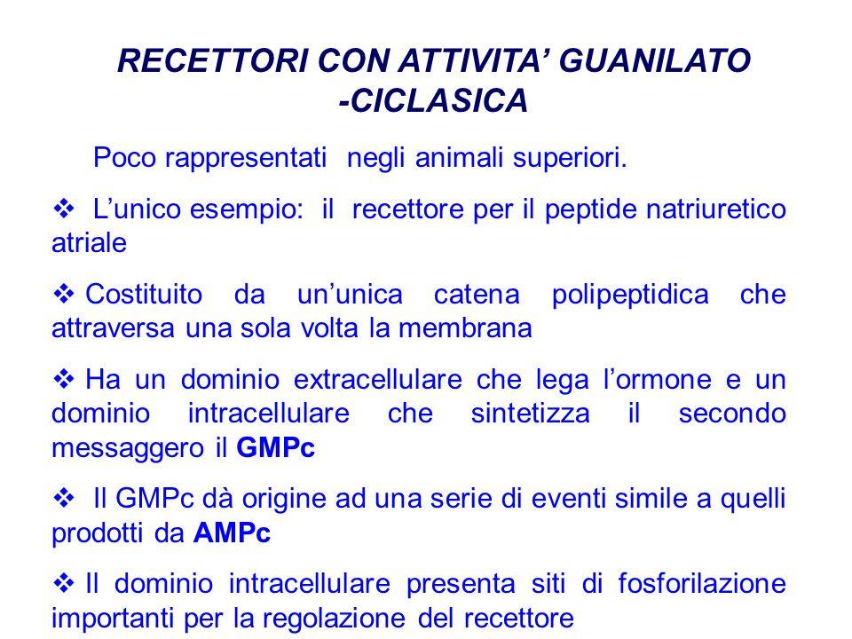 RECETTORI CON ATTIVITA' GUANILATO -CICLASICA