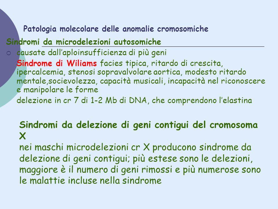 Patologia molecolare delle anomalie cromosomiche