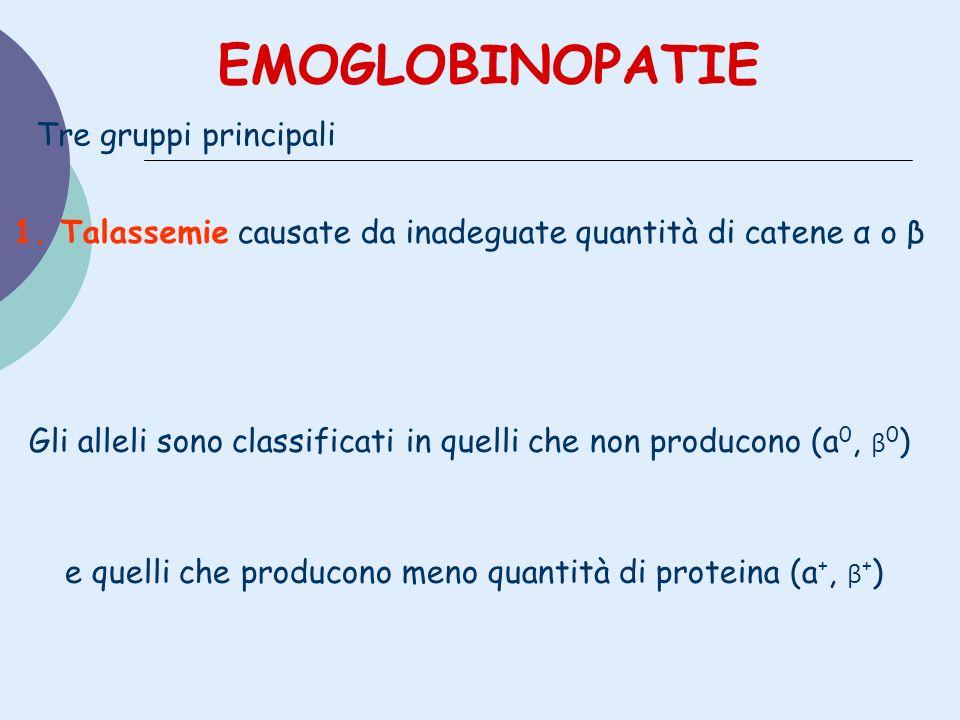 EMOGLOBINOPATIE Tre gruppi principali