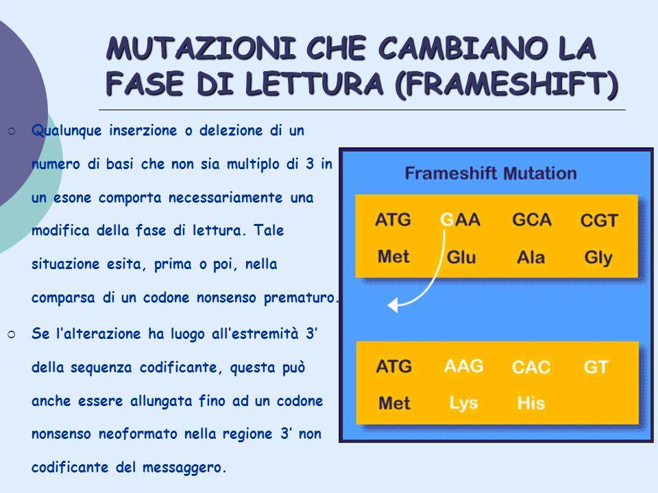 MUTAZIONI CHE CAMBIANO LA FASE DI LETTURA (FRAMESHIFT)