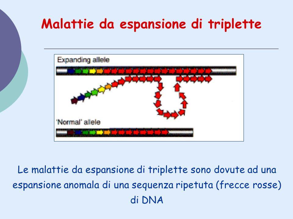 Malattie da espansione di triplette