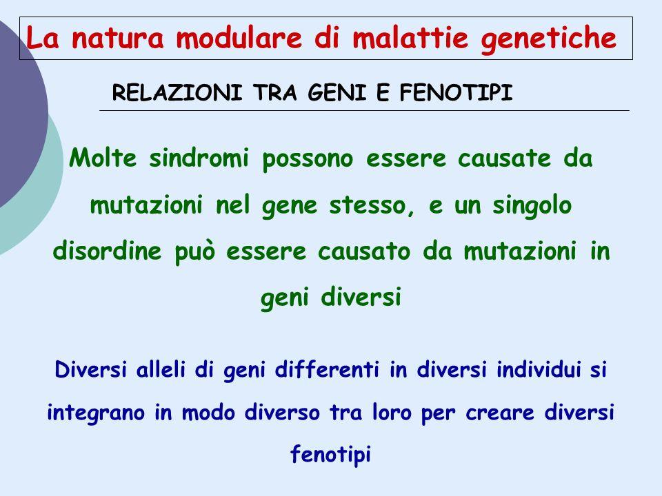 La natura modulare di malattie genetiche