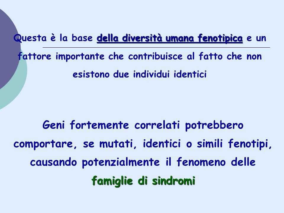 Questa è la base della diversità umana fenotipica e un fattore importante che contribuisce al fatto che non esistono due individui identici