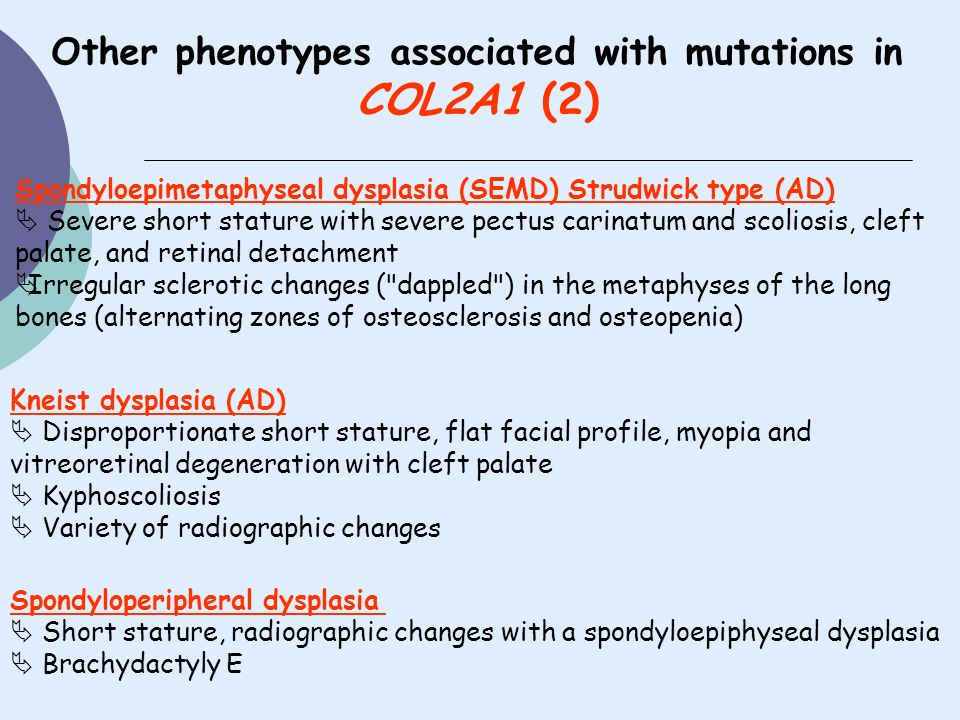 Other phenotypes associated with mutations in