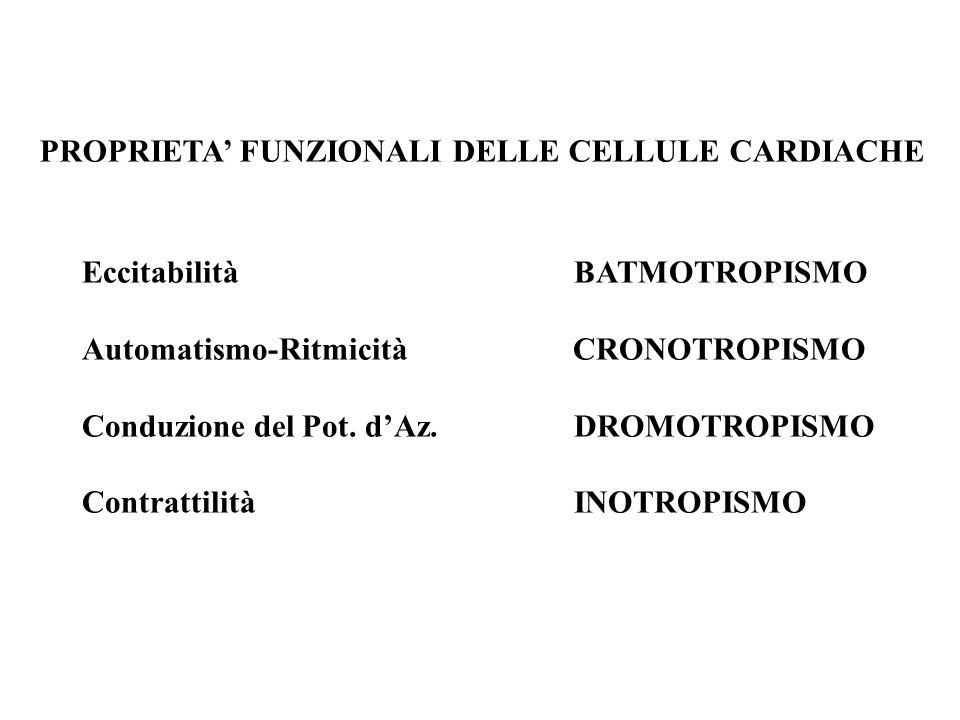 PROPRIETA' FUNZIONALI DELLE CELLULE CARDIACHE