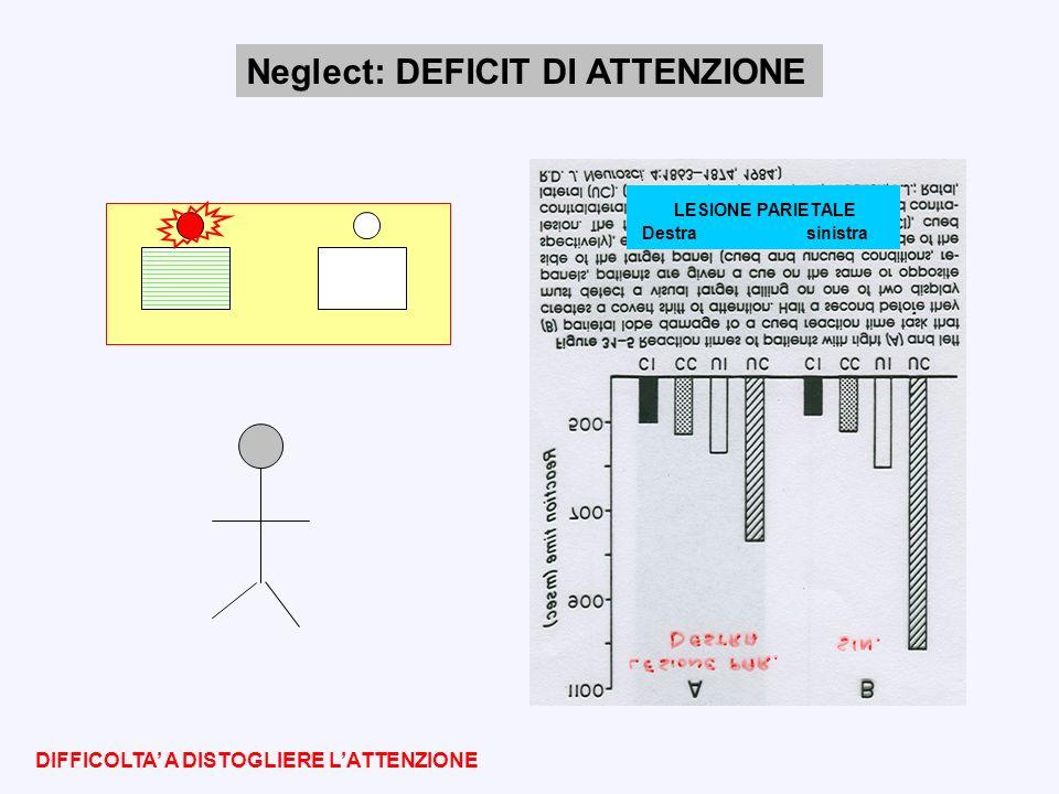 Neglect: DEFICIT DI ATTENZIONE