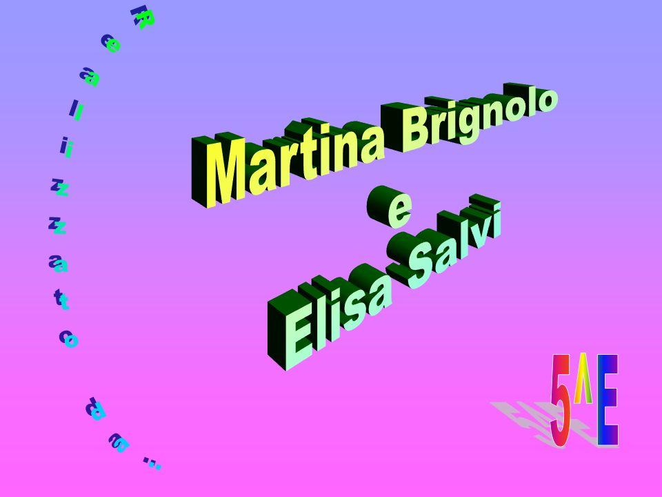 Martina Brignolo e Elisa Salvi Realizzato da: 5^E