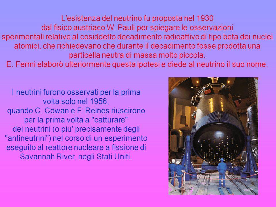 L esistenza del neutrino fu proposta nel 1930