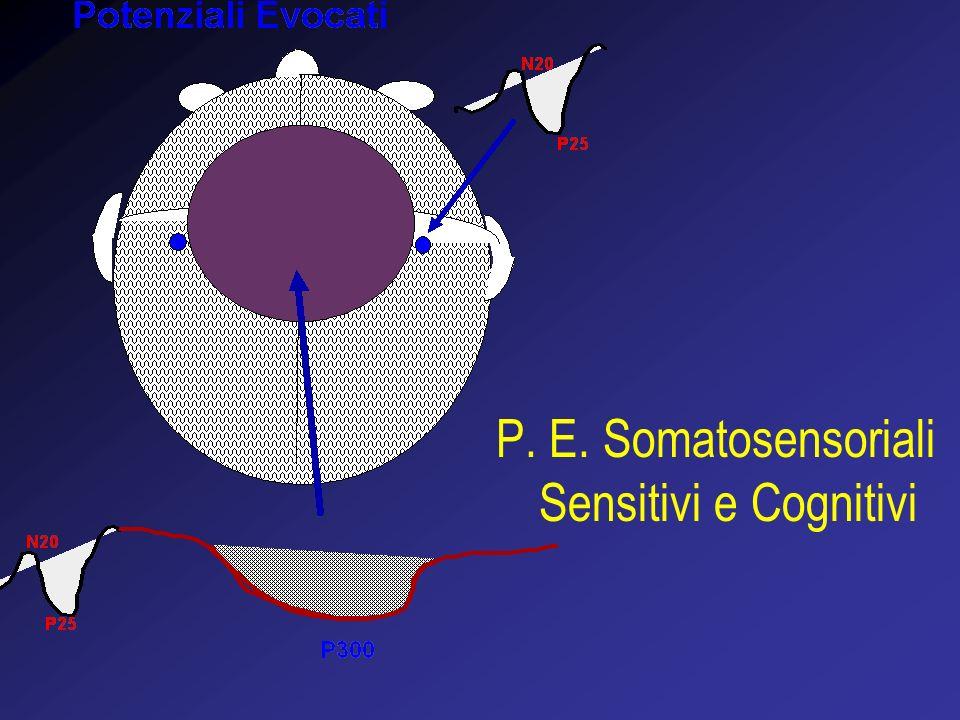 P. E. Somatosensoriali Sensitivi e Cognitivi