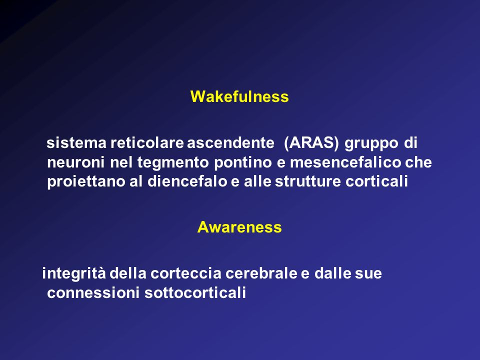 Wakefulness