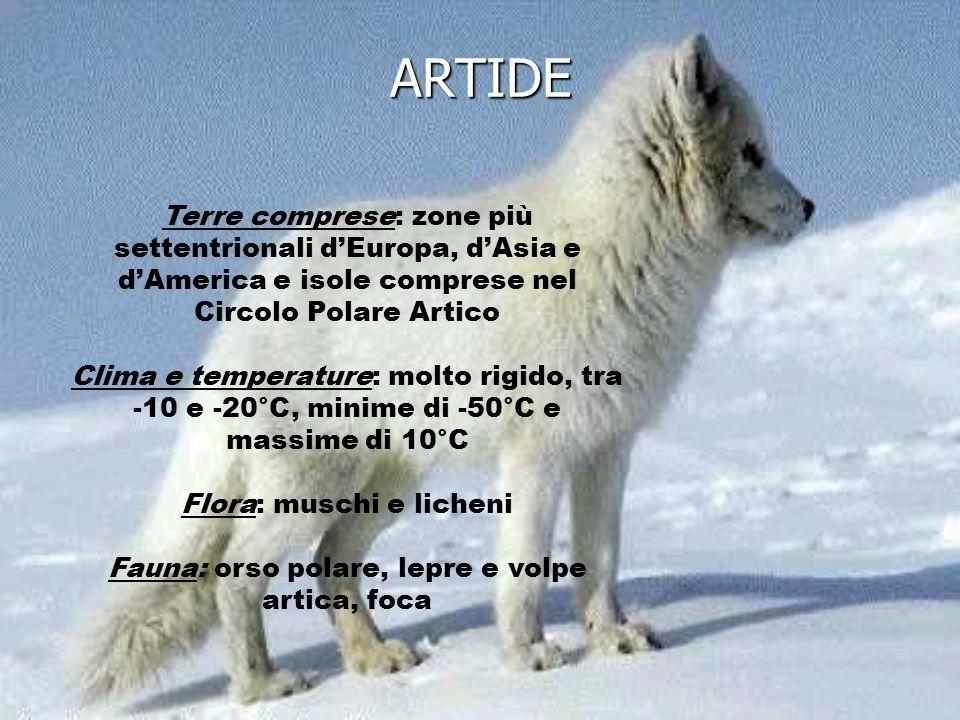 ARTIDE Terre comprese: zone più settentrionali d'Europa, d'Asia e d'America e isole comprese nel Circolo Polare Artico.