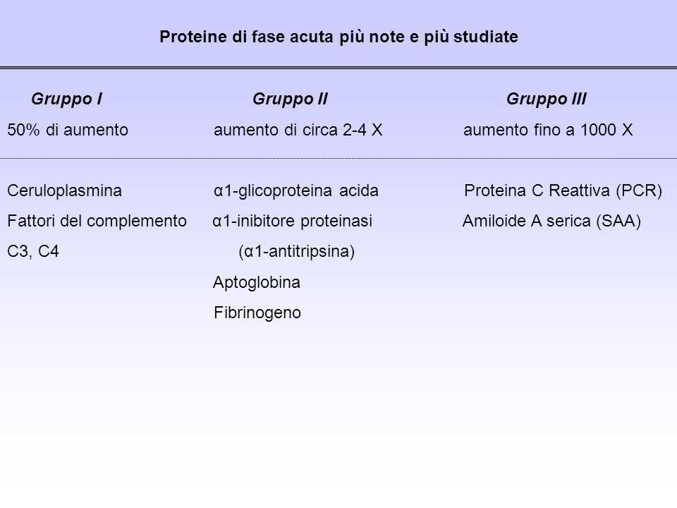 Proteine di fase acuta più note e più studiate