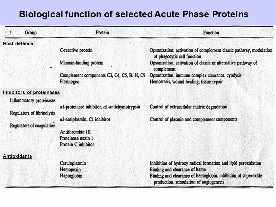 Biological function of selected Acute Phase Proteins