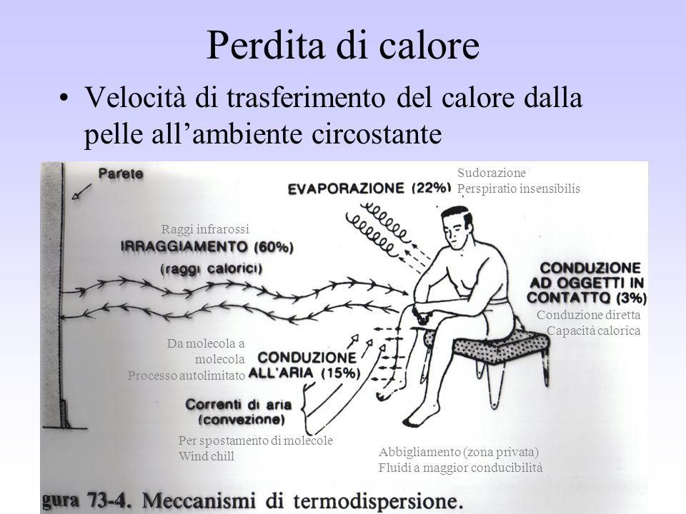 Perdita di calore Velocità di trasferimento del calore dalla pelle all'ambiente circostante. Sudorazione.