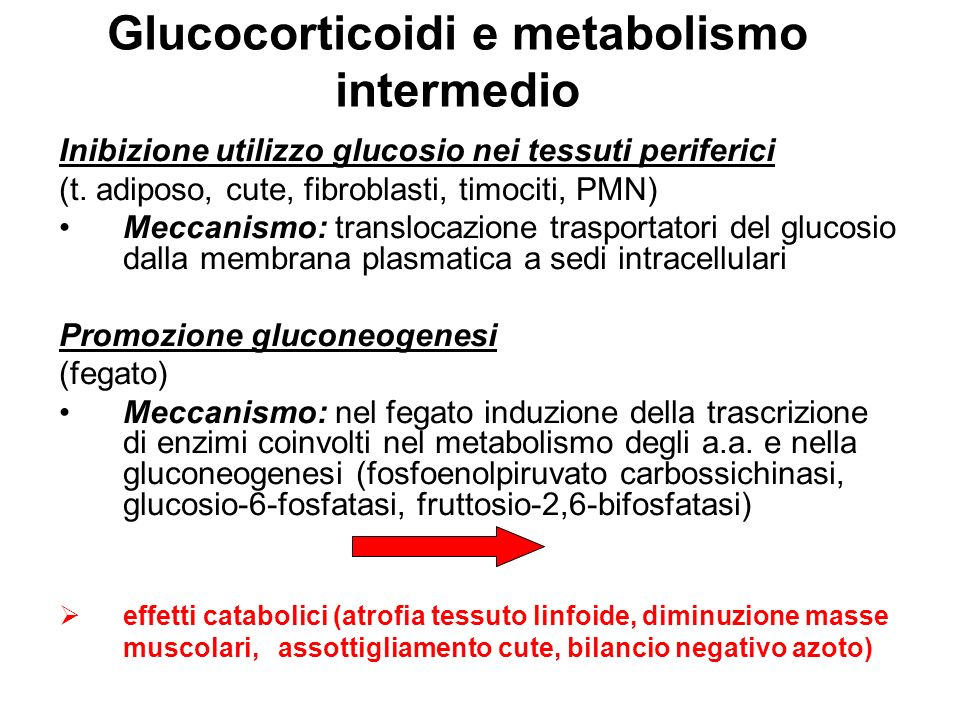 Glucocorticoidi e metabolismo intermedio
